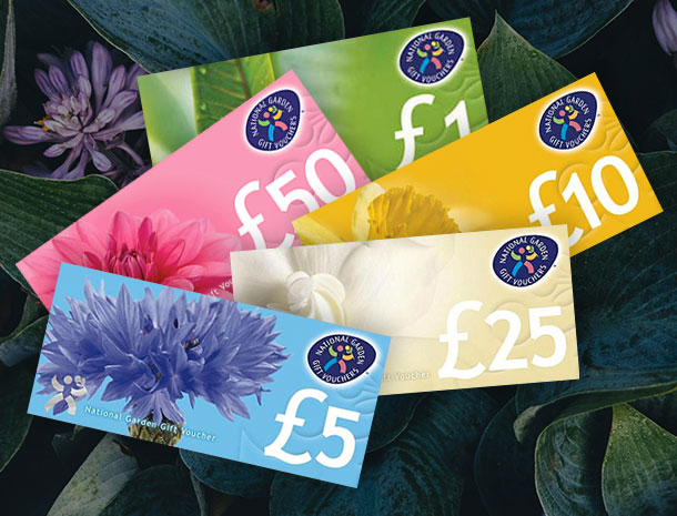 Horticultural Trade Association gift vouchers