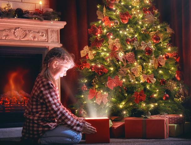 buy popular 83947 aceec Luxury Christmas Trees   Hayes Garden World