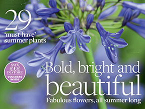 Beautiful Gardens Magazine