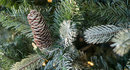 Frosted Colorado Spruce artificial Christmas tree