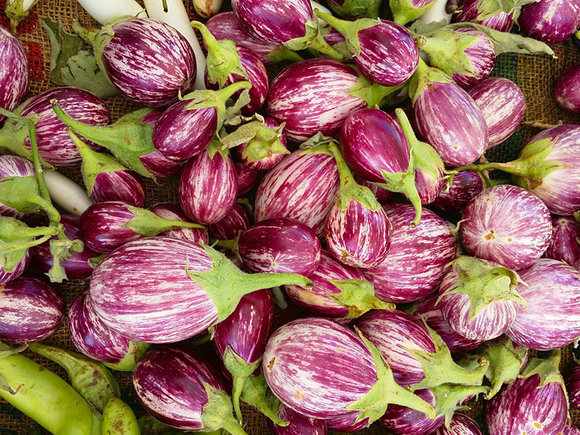 purple/white striped aubergine (eggplant)