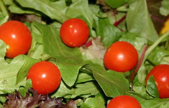 Cherry tomatoes and salad leaves