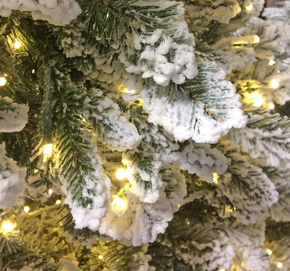 Iceland Fir showing warm white lights