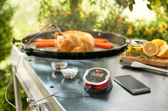 Weber iGrill temperature probe