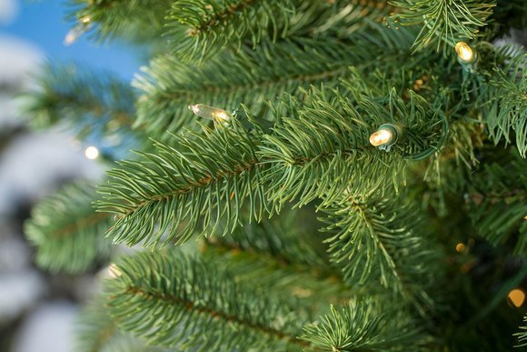 Lakewood Spruce Artificial Christmas Tree