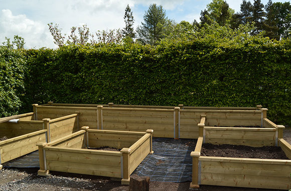 Raised beds under construction with access all round