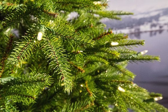 Weeping Spruce Pre-lit artificial Christmas tree detail