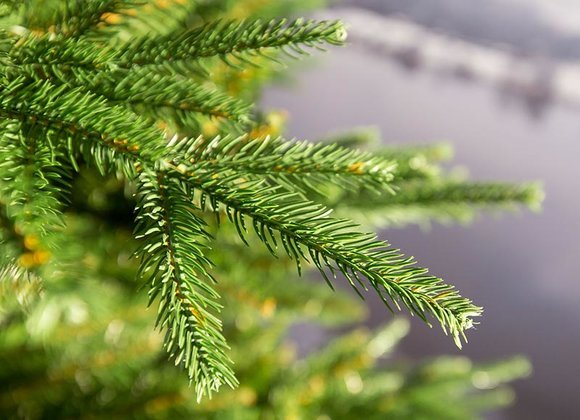 Fraser Fir Next Generation artificial Christmas tree detail