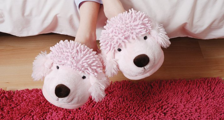 Aroma Home novelty slippers