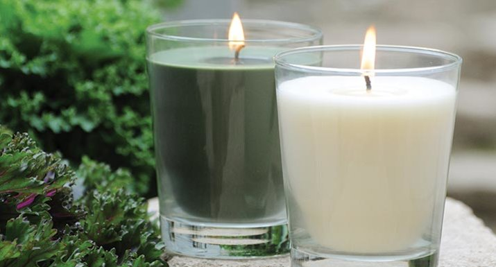ROOT candles in green and white