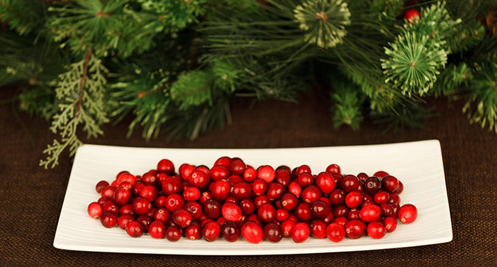 Cranberries in dish with Christmas decoration