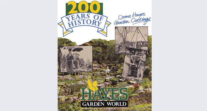 Hayes History