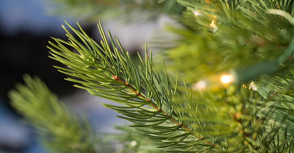 Need help choosing your Artificial Christmas Tree?