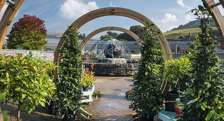World of Plants
