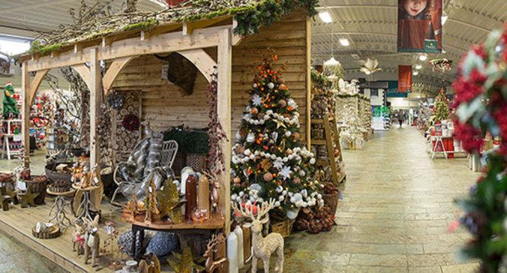 Hayes Garden World Christmas department 2016