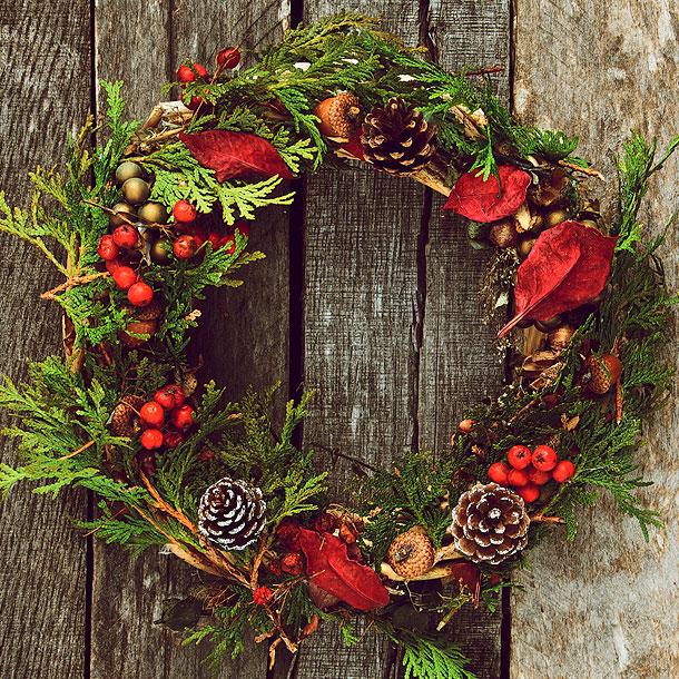 Christmas Wreath.Create Your Own Christmas Wreath Hayes Garden World
