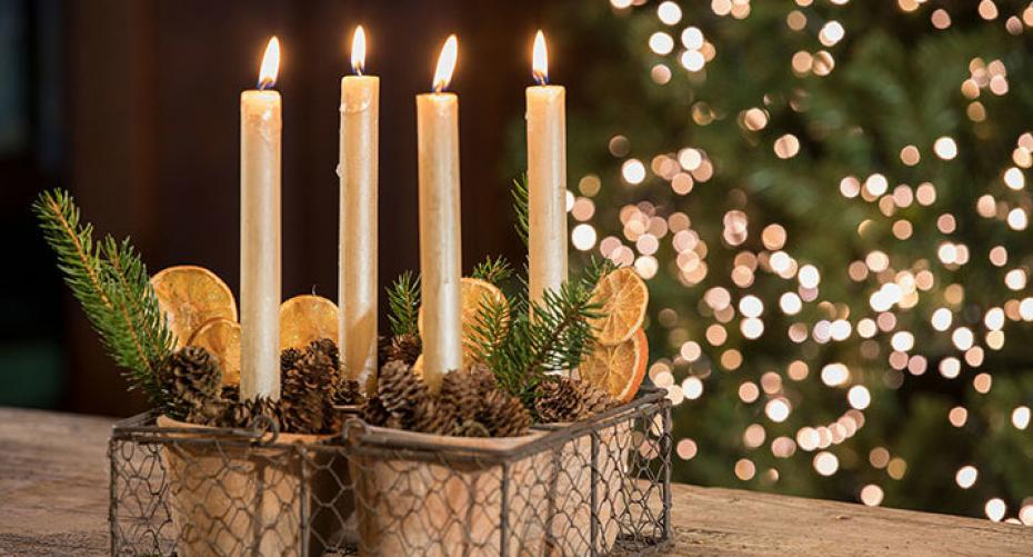 Advent arrangement with plant pots, cones, orange slices, pine sprigs, candles