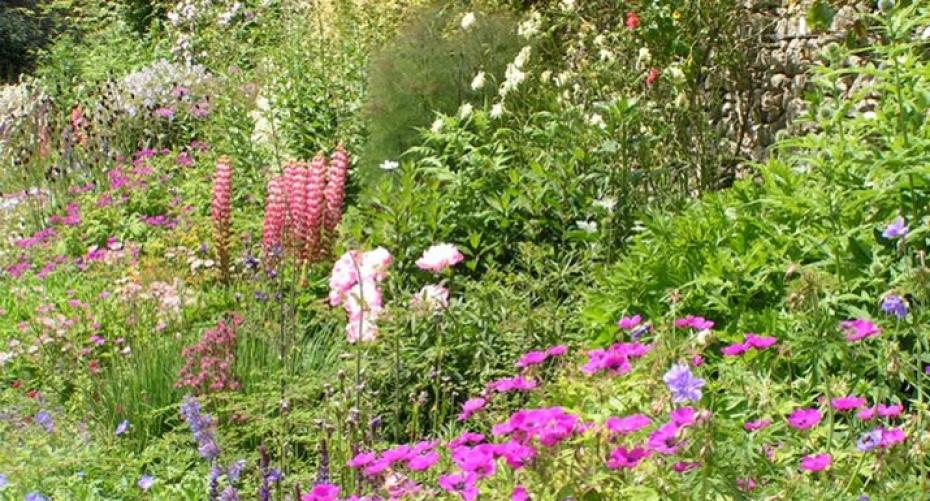 Herbaceous border at Sizergh Castle, Cumbria