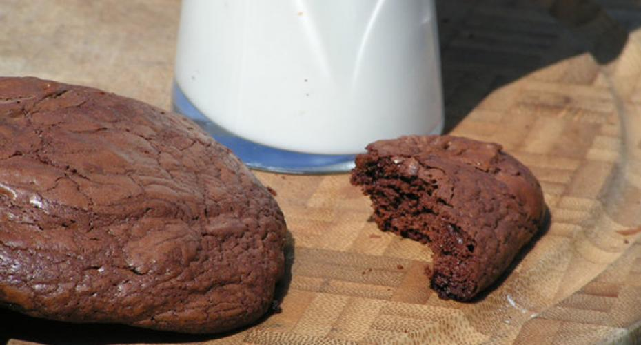 Chocolate brownie cookie with a glass of milk at Hayes Garden World
