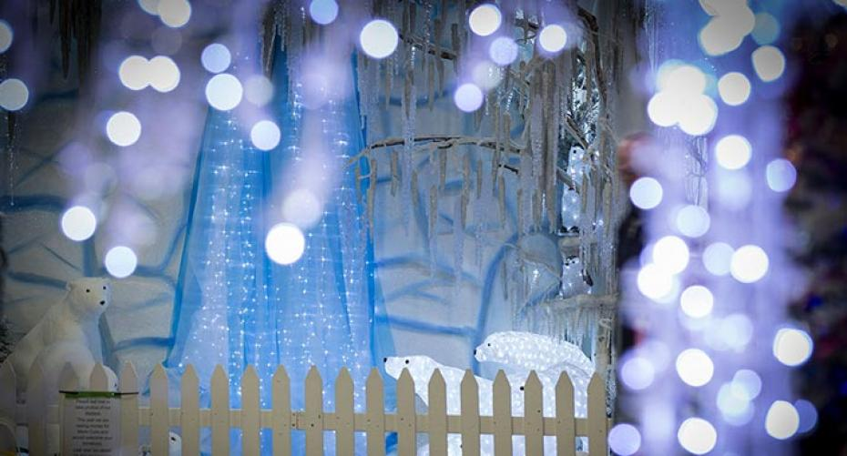 Wintry Christmas Display