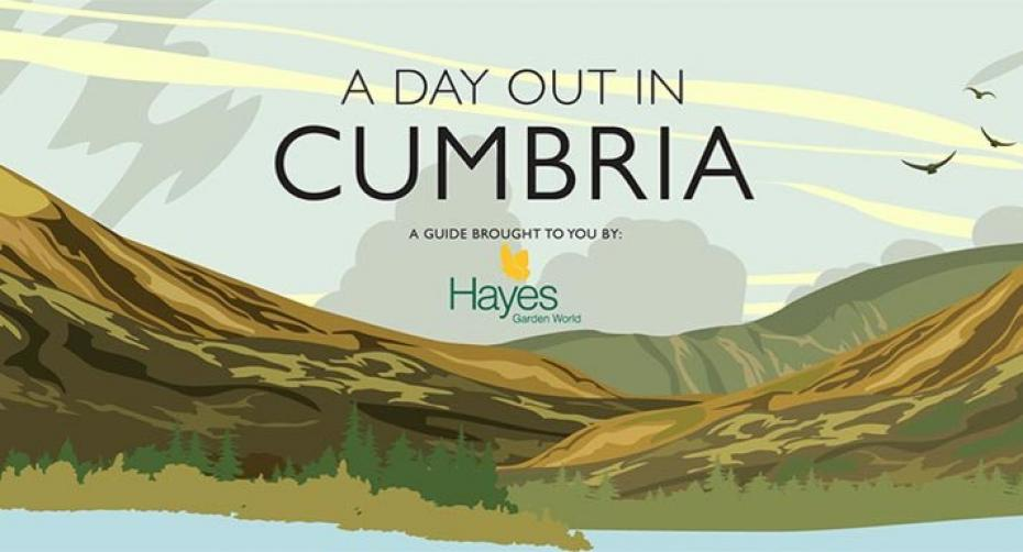 Day out in Cumbria App