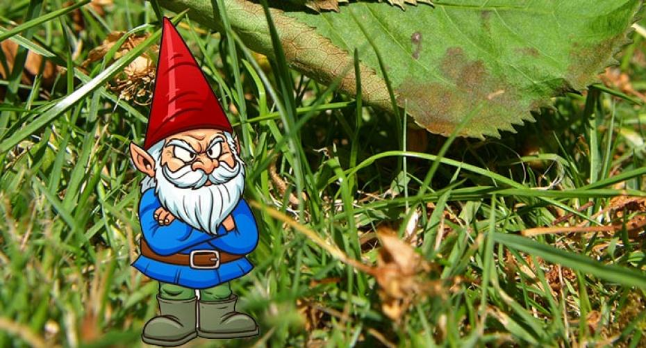 Gardening Mistakes Gnarley Gnome