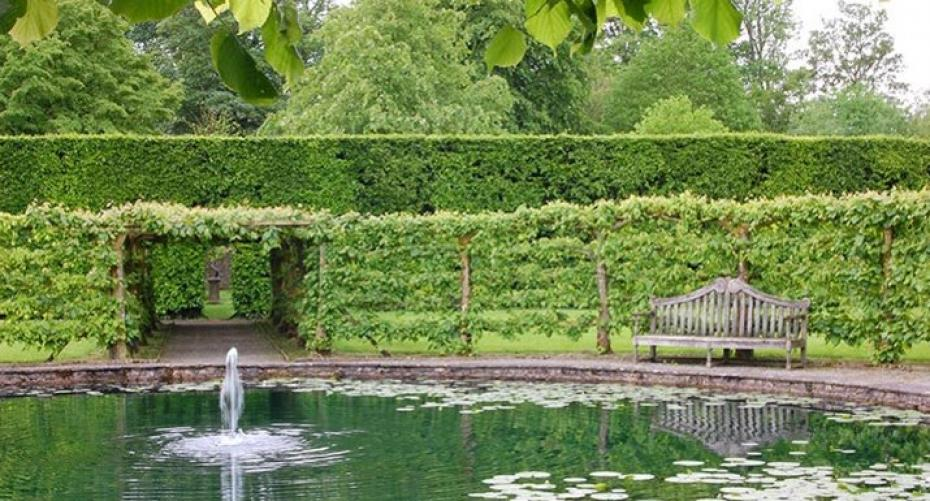 Pool with lilies at Levens Hall, Cumbria
