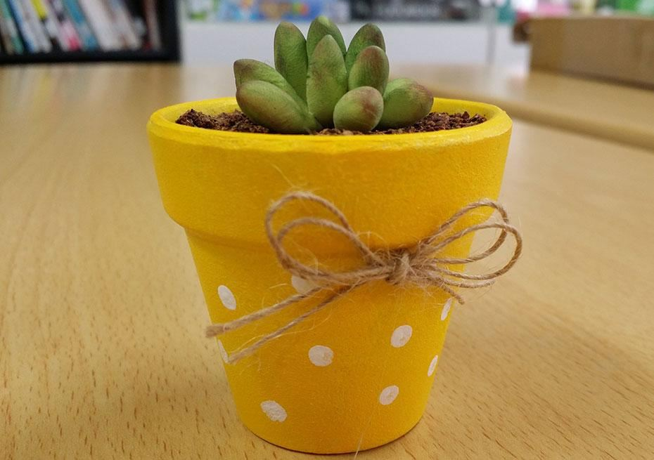 painted pot with succulent plant
