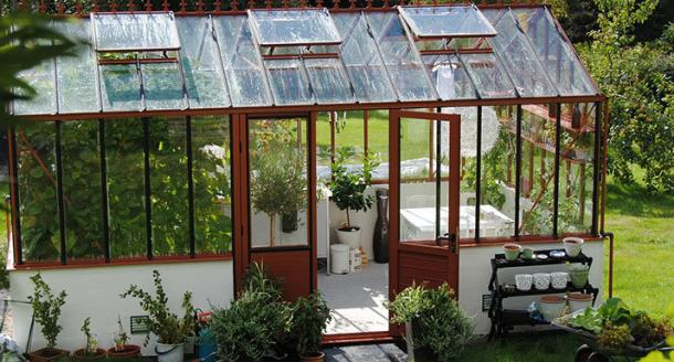 Greenhouse and plants in garden