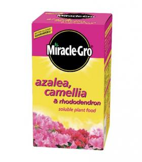 Scotts Miracle-Gro Azalea, Camelia & Rhododendron Soluble Feed
