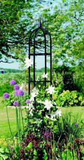 The Deluxe Obelisk will act as a solid feature with or without plants.