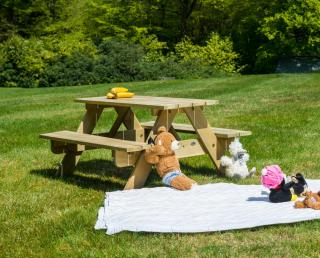 Alexander Rose Code 310C. A pine picnic table just ready for entertaining the kids.