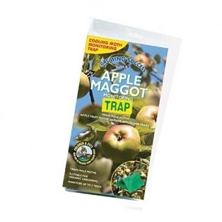 Growing Success Apple Maggot Monitoring Trap. The monitoring trap uses the pheromone scent of the female moth to attract and trap male moths of the same species. Beneficial insects are not attracted.