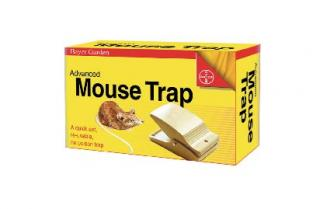 Bayer Advanced Mouse Trap. Quick set, mouse trap. Re-usable, safe and simple to set.