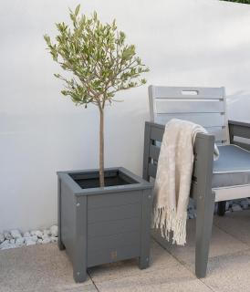 Norfolk Leisure Florenity Grigio Square Planter