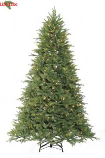 This 7ft pre-lit Asheville will make an impressive display with a good number of tips & warm white lights.