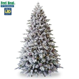 Our PE/PVC mix 6ft Pre-lit Snowy Dorchester Pine just needs decorations for a fabulous winter display. FREE Gift included when you buy online.
