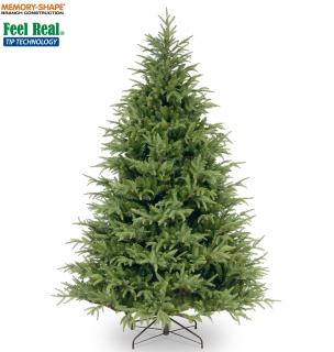 This 7.5ft Frasier Grande Fir has realistic looking branches with memory shape technology.