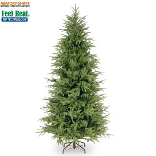 This 7.5ft Frasier Fir is slim for tight corners & has memory wire branches for an instant shape. FREE Gift included when you buy online.
