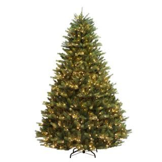 8ft Pre-lit Shefford Spruce Life Like Artificial Christmas Tree