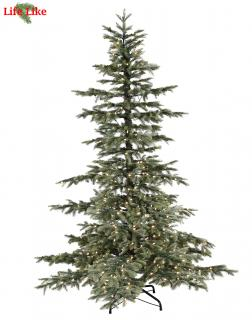 This 6ft Pre-lit Windsor Spruce has a lovely blue-green tint.