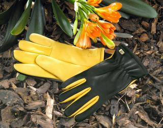 Ladies 'Dry Touch' Gold Leaf Gardening Gloves