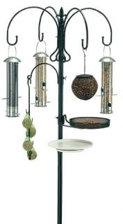 All you need to create your own bird care feeding station and attract a wide variety of wild birds to your garden. Don't forget the bird food!