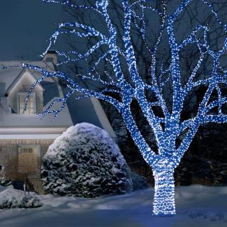 This set of 100 Indoor and Outdoor Blue LED Lights can be extended up to 5000 LED's.