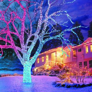 This set of 100 Indoor and Outdoor LED Lights changes colour from frosted red to blue.