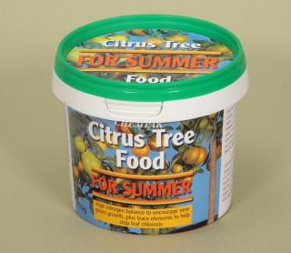 Chempak Citrus Tree Summer Food
