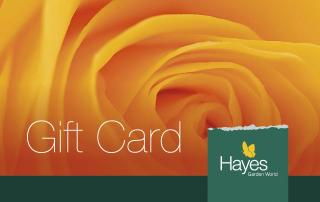 The ideal gift - add up to £250 credit on each card in multiples of £5. FREE postage included.