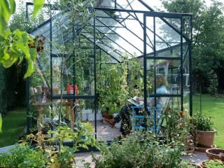 Vitavia Jupiter 9900 Greenhouse in Green