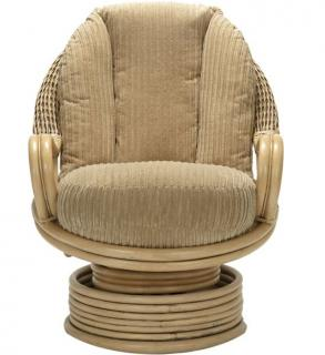 The Desser Deluxe Swivel Rocker is a great alternative to the traditional armchair.