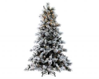 Create a wintry scene with this 7ft Pre-lit Nordic Pine with Glittery Flocked branches. FREE Gift included when you buy online.